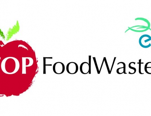 Newsletter Stop Food Waste