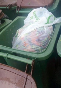 picture of a wheelie bin filled with waste.